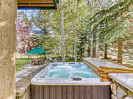 Warm Springs Mountain Retreat vacation rental property