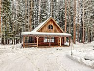 Forest Cabin vacation rental property