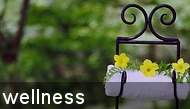 Wellness Deals and specials