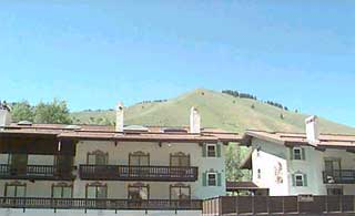 Edelweiss vacation rental property